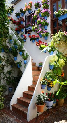 The courtyard of an old Andalusian house in Cordoba, Spain • photo: Khaled AL-Ajmi on Flickr