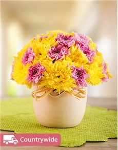 No matter what the occasion, find the perfect gift from NetFlorist's extensive range of gifting ideas. Online Florist, Easter Flowers, Flowers Online, Mind Blown, Happy Easter, Gifts, Happy Easter Day, Presents, Favors