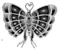 Significato del Tatuaggio Farfalla