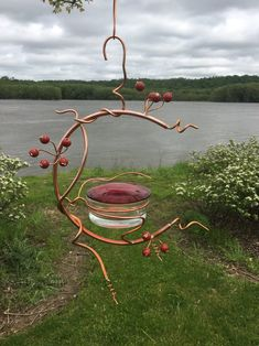 Hummingbird Swing, Glass Hummingbird Feeders, Humming Bird Feeders, Hummingbird House, Hummingbird Food, How To Attract Hummingbirds, Red Berries, Wire Crafts, Small Birds