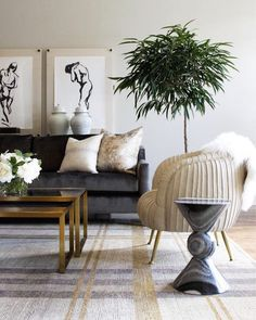 1057 best Living Room images on Pinterest   Drawing room interior ...
