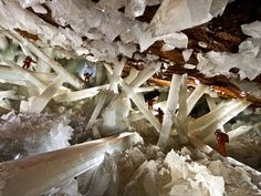 Naica Crystal Caves 10 / 20  These caves in Mexico have the largest crystals in the world—truly unbelievable!