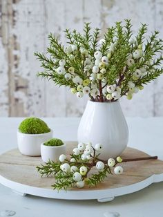 For an everlasting display of winter foliage and berries, you can't get better than this springy branch, which can be popped in a vase or bound into wreaths or garlands for a lovely seasonal display.