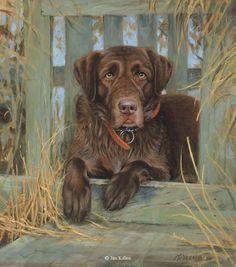 Bud Chocolate Labrador <br> Canvas Giclee 14 x 16