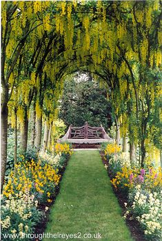 48 Best Flower tunnels images  Beautiful places