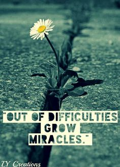 """Out Of Difficulties Grow Miracles."""