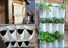 Uma horta bem original e fácil de fazer em casa.