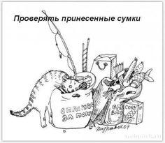 кот вытирает об ковер попу: 17 тыс изображений найдено в Яндекс.Картинках