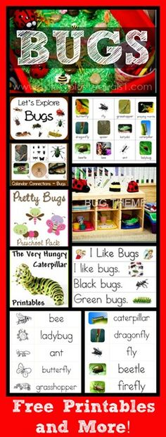 Bug Theme Collection ~ Printables, Sensory Bin, Calendar Connections, & More!