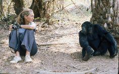 Institut Jane Goodall France Jane Goodall