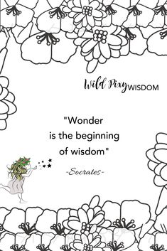 We love this quote from the great Socrates. According to the dictionary wonder is 'a feeling of amazement, admiration & curiosity caused by something beautiful or remarkable'-sounds like the garden is the perfect spot to us! Solar Led Lights, Fairy Figurines, Fairy Garden Houses, Socrates, Fairy Garden Accessories, Miniature Fairy Gardens, Fairy Land, Lawn And Garden, Curiosity