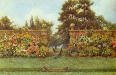 E.A. Rowe: Peacock