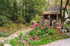 My potting shed during my favorite season! We live in the Blue Ridge mountains on a wooded 25 acre property.