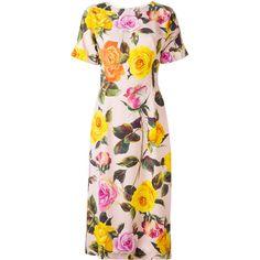 Dolce & Gabbana Dresses for Women Dolce & Gabbana, Rose Print Dress, Church Dresses, Straight Dress, Modest Fashion, Floral Fashion, Women's Fashion, Color Rosa, Cute Dresses