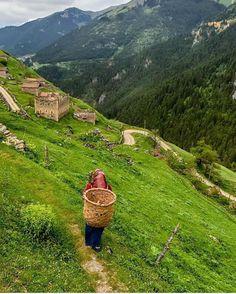 Mountains, Instagram Posts, Nature, Travel, Tulum, Naturaleza, Viajes, Destinations, Traveling