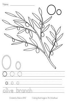 O Is For Olive Branch