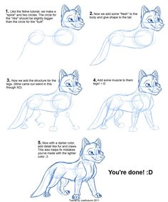 How to Draw Canines: Body by JustAutumn on deviantART