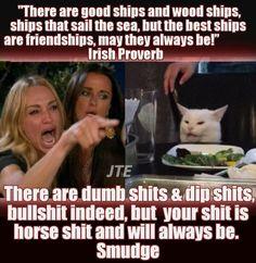 Silly Jokes, Stupid Funny Memes, Funny Pins, Hilarious, Funny Shit, Funny Stuff, Seriously Funny, Really Funny Memes, Bad Cats