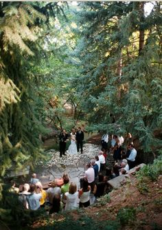 Just imagine, a forest wedding, the smell of earth, pine and spruce, soft shafts of sunlight piercing through the trees, the hush.
