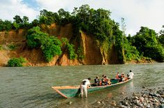 Manu River, Manu National Park, Peru