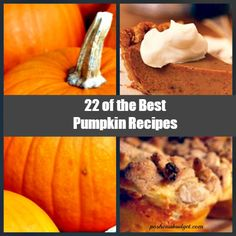 22 OF THE BEST PUMPKIN RECIPES