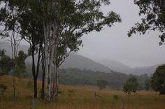 Misty day in the Upper Brisbane Valley, Somerset Region, Queensland...