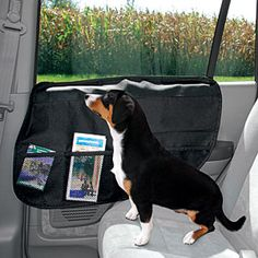 Cool Stuff For Your Pet On Pinterest Pets Your Dog And Save Screen