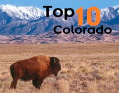 Top 10 colorado with kids, including: -Animal encounters -Historic trains -Skiing & winter sports -Denver attractions -Much More  Pin now & travel later...