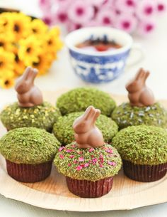 Thirsty For Tea Matcha Moss Cupcakes