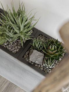 Dekoration | der neue Steingarten im Esszimmer und ein GEWINNSPIEL* – mxliving