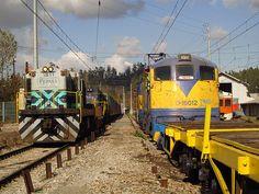 Locomotora ALCo D-1811 (ex Dt12100 modificada) de FEPASA y @GE D-16002 (más una GAI Breda E-30xx, un automotor FIAT AES-xx y una GE D-51xx, poco visibles en la foto), todos de EFE, en Hualqui, Chile