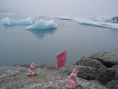 Pink Army in Iceland