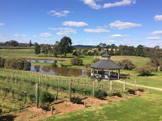 A day out in the Swan Valley, about a 20 minute drive from Perth. We visited Sittella Winery and Caversham Wildlife Park.