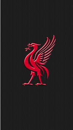Liverpool Amoled