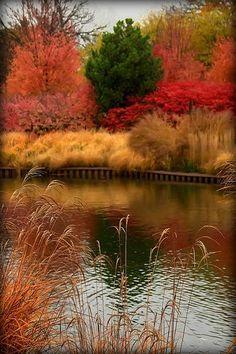 İlham Veren Sonbahar Fotoğrafları
