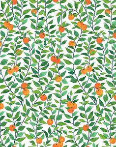 Orange Crush Removable Wallpaper - White