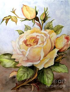 """This is my latest painting I call it """"Yellow roses in the Garden"""" hope you all like it. Its for sale on eBay"""