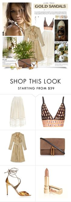 """""""Micro Trend: Solid Gold Sandals"""" by thewondersoffashion ❤ liked on Polyvore featuring Rochas, Marni, Rodarte, Nina Ricci, Jimmy Choo, Dolce&Gabbana, Dolce Vita, Katie Rowland, women's clothing and women"""