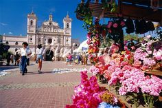 size: Photographic Print: The Church of Virgin De Los Dolores and Flower Stall, Tegucigalpa, Honduras, Central America by Robert Francis : Artists Tegucigalpa, Honduras Travel, Cityscape Photography, Central America, Dolores Park, Beautiful Places, Places To Visit, Street View, Stock Photos