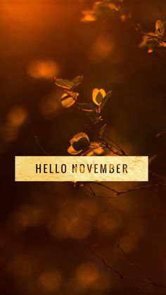 #hello #november #quote #autumn #harvest #wallpaper #iphone