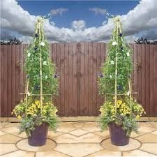 Image result for Nature Metal Obelisk Climbing Flowers Plants