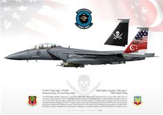 """UNITED STATES AIR FORCE / RSAF (Republic of Singapore Air Force)428th Fighter Squadron """"Buccaneers"""" . 366th Fighter WingMountain Home Air Force Base, Idaho"""