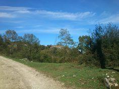 Ortiguero, cabrales. Asturias