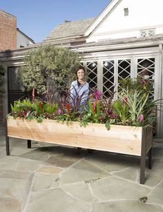 2u0027 X 8u0027 Elevated Cedar Planter Box Tall Planter Boxes, Elevated Planter Box