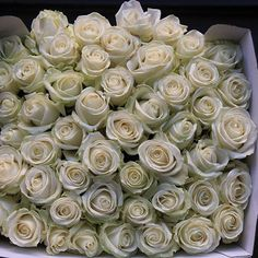 We've had a delivery! #flowerseverywhere #mcqueens #flowers #florist #london #londonflorist #londonflowers #roses