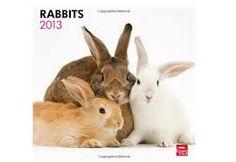 Znalezione obrazy dla zapytania rabbit lovers