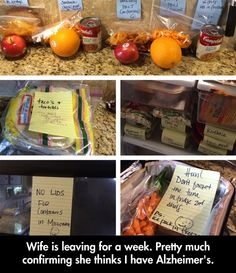 Wife Instructions
