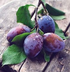 Nutrition To Lose Belly Fat Still Life Photos, Still Life Art, Fruit Photography, Still Life Photography, Grape Nutrition, Nutrition Month, Fruit Painting, Beautiful Fruits, Prune