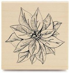 vintage poinsettia images | Amazon.com: Vintage Poinsettia - Rubber Stamp: Arts, Crafts & Sewing
