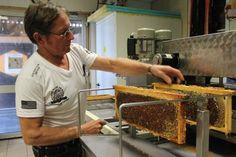 OUEST-FRANCE EMPLOI. Loïc a fabriqué sa première ruche à 14 ans